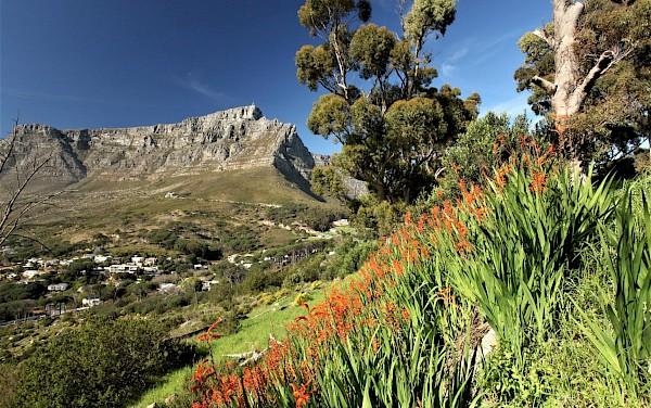WIRD VERSCHOBEN: Südafrika (verlegt v. 5.4.)